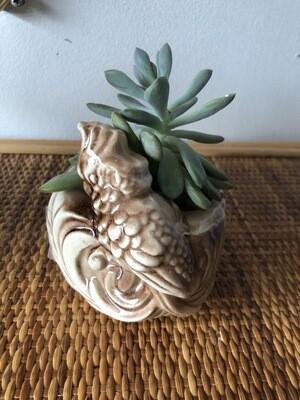 Vintage Shawnee Pottery