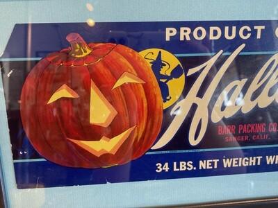 Vintage Framed Halloween USA Fruit Label
