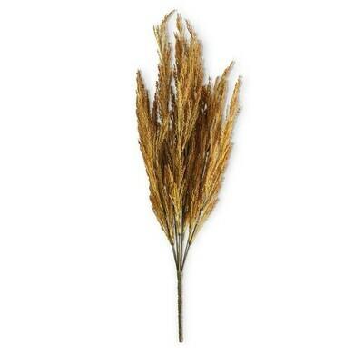 Natural Wheat 21