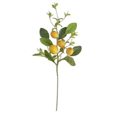 Lemon & Foliage 28