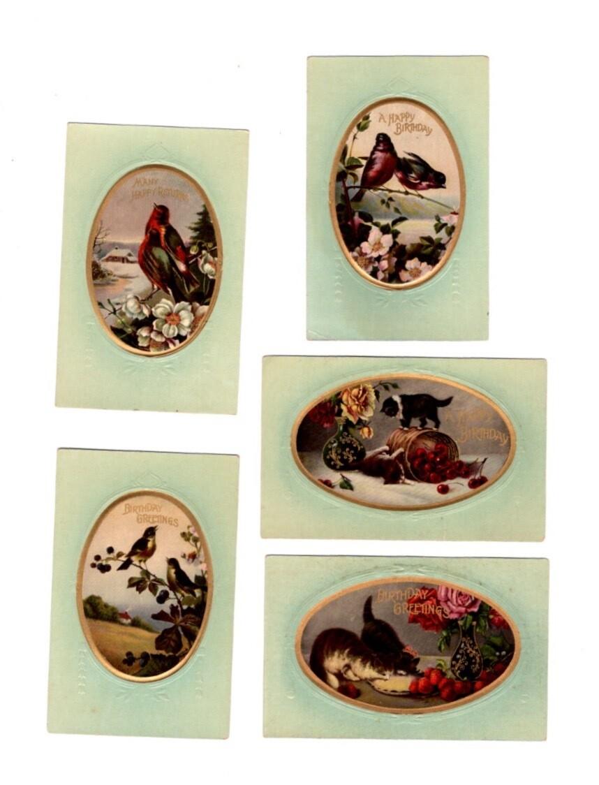 Vintage Postcard Birthday 5-Pack of Kitties and Birds