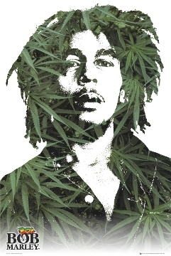 Bob Marley - Leaves