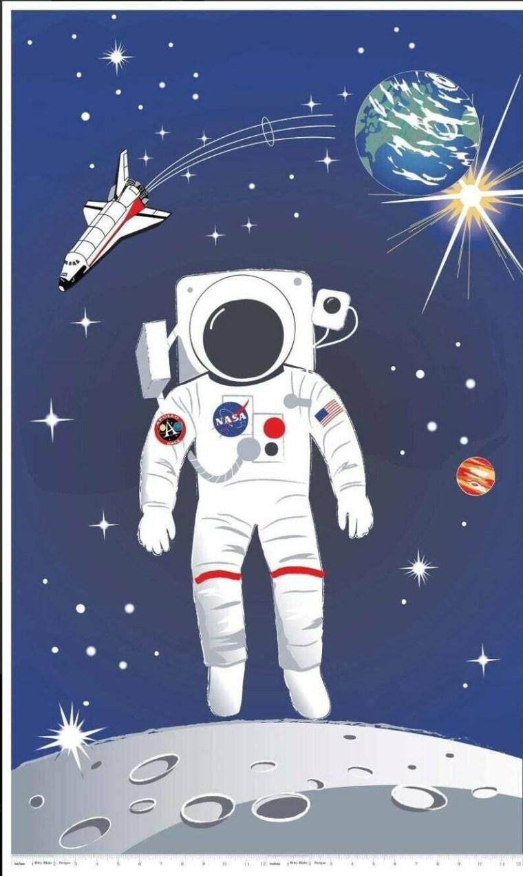 Astronaut Panel (P7805)