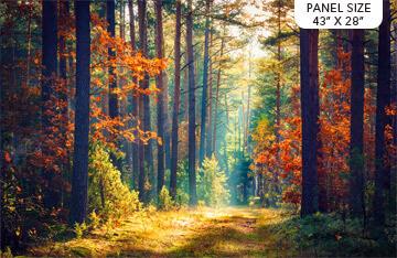 DP23404 Autumn Stroll28 Panel