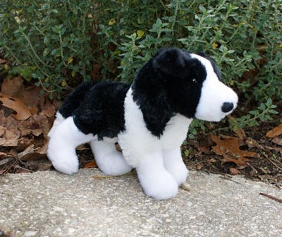 Small Stuffed Border Collie