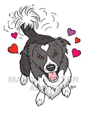 Border Collie Heart Cards - MABCR Exclusive