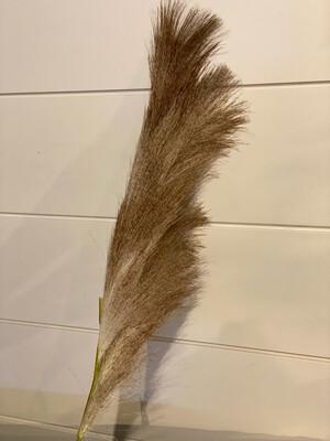 Pampas Grass Cream/brwn 47.5
