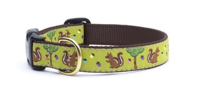 85 Squirrel Collar- Dog Sz M Wide