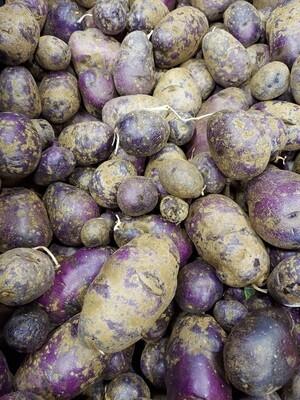 *SGF New Potato 1 lb - Blue