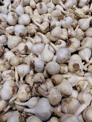 *SGF Garlic 1/4 lb