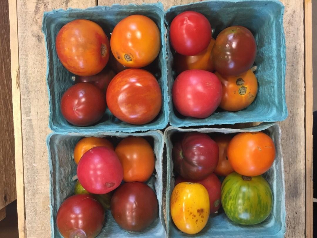 SGF Salad Tomatoes Pints