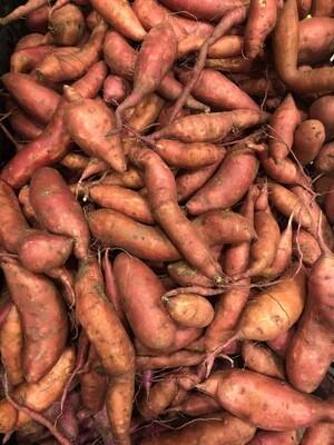 *SGF Sweet Potatoes 1 lb - Fingerling