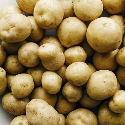 Potatoes , White - 1 lb *