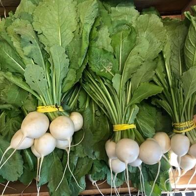 Turnips , Hakurei - Bunched *