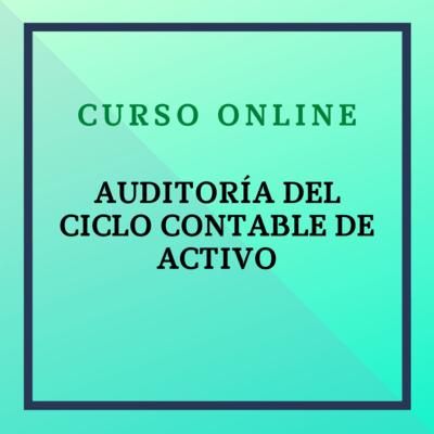 Auditoría del Ciclo Contable de Activo. Del 29 de noviembre de 2021 al 23 de enero de 2022