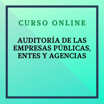 Auditoría de Empresas Públicas, Entes y Agencias. Del 29 noviembre - 24 diciembre de 2021