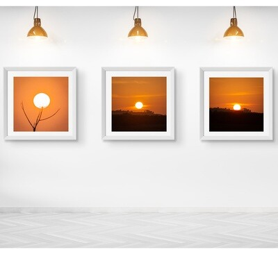 Set of ANY Three Framed Prints of your choice (single mount only)