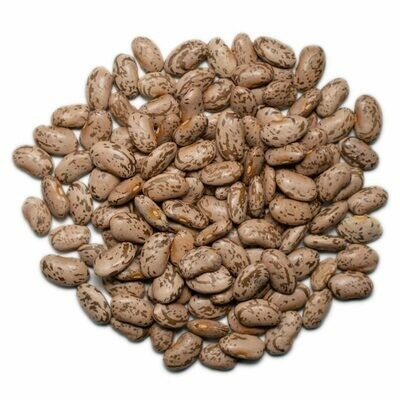 Loose Organic Pinto Beans 100g