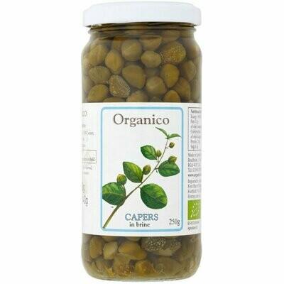 Organico Organic Capers in Brine 250g
