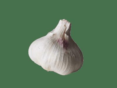 Garlic Bulb Each.