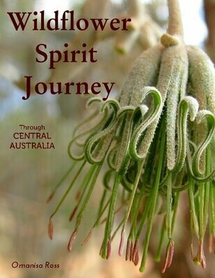 Wildflower Spirit Journey PDF (book only)
