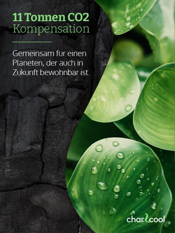 11 Tonnen  CO2-Jahreskompensation