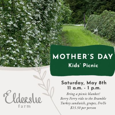 Mother's Day Picnic (Kids)