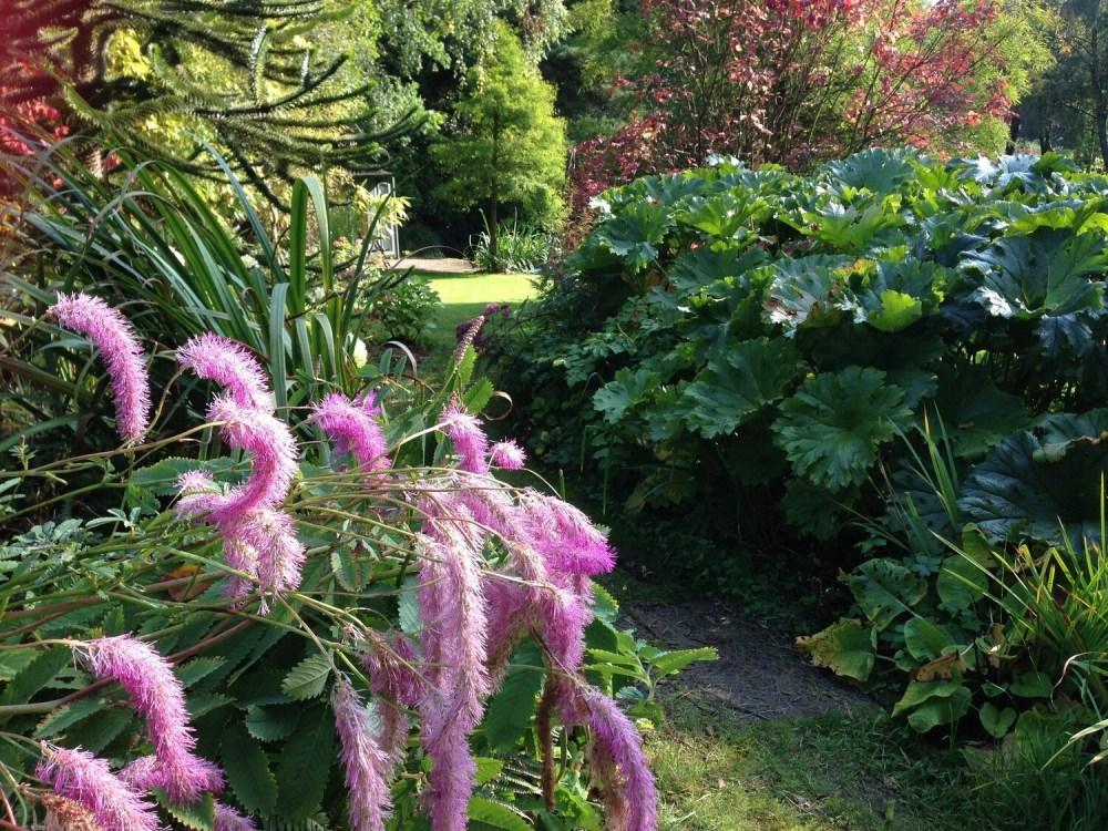 Garden Season Pass (12th April to 30th September 2021)