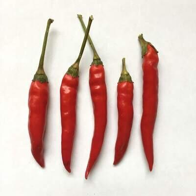 Dhanraj Chile Seeds