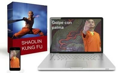 Kung Fu Shaolin Por Sifu Shi Yan Ming