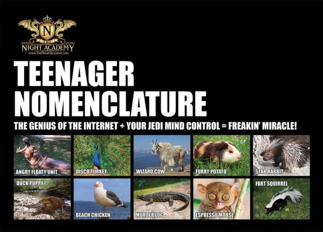 Teenager Nomenclature