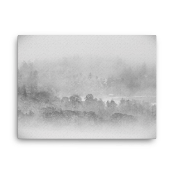 Woodland Mists Fine Art Poster