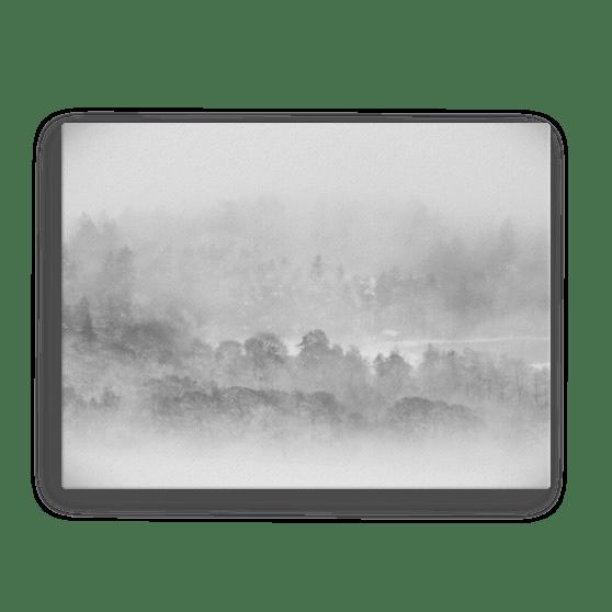 Woodland Mists Canvas Print