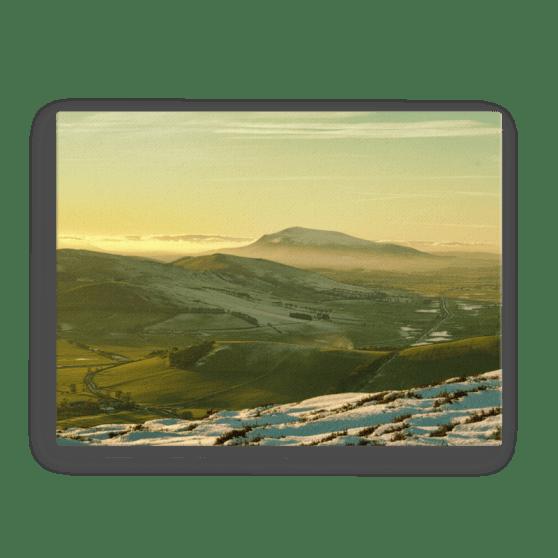 Zen Tinto Canvas Print