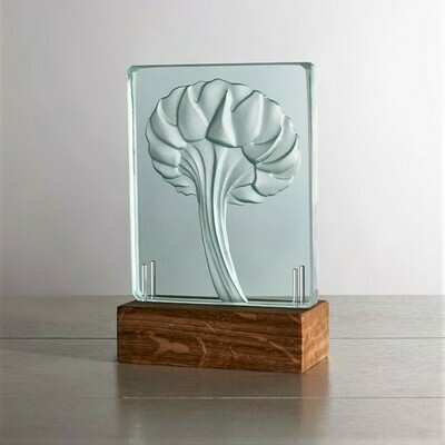 Ox-Eye Daisy. Engraved Sandblasted Glass Table Light Sculpture By Tim Carter