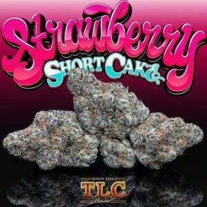 STRAWBERRY SHORT CAKE-JUNGLE BOYS