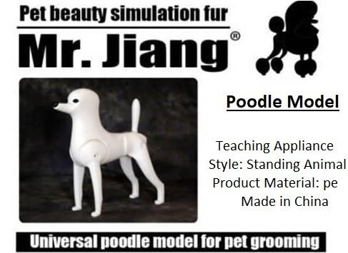 Poodle Model Dog