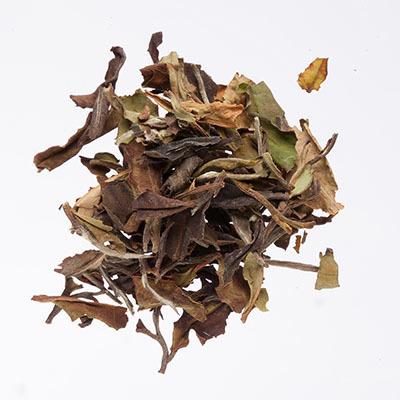 White Tea Golden Eyebrow