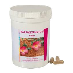 Harpagophytum: articulations (125 gélules)