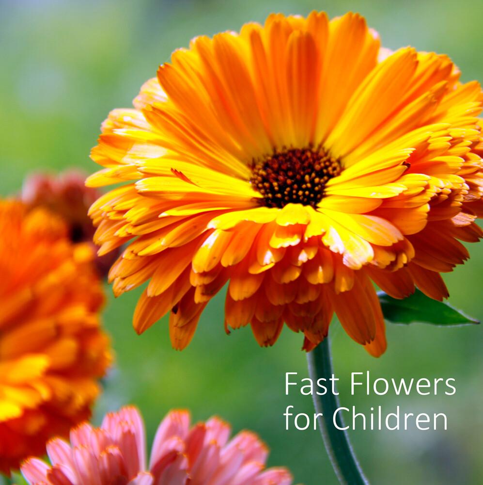 Fast Flowers for Children