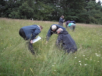 Preliminary Ecological Appraisal and Report Writing -PEA (Hampshire): 10th & 11th June 2021