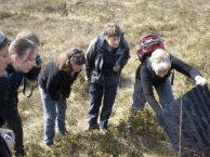 Surveying for Protected Species Self-study  Course