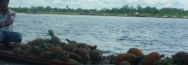 Ananastransport im Amazonas