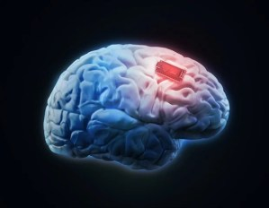 A tiny brain implant can be charged wirelessly to control brain circuits