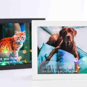 Pet Memorial Light Boxes