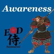 ED-Shi-Ep22-Awareness