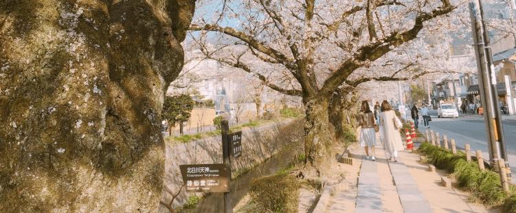 哲学の道 銀閣寺