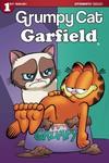 Grumpy Cat Garfield #1 (of 3) (Cover C - Ruiz)
