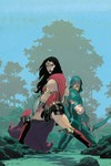 Green Arrow #27 (Ribic Variant Cover Edition)