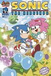 Sonic The Hedgehog #290 (Cover B - Variant Yardley)